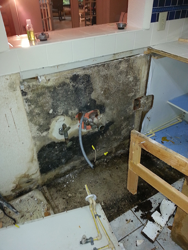 Containment and Mold Treatment